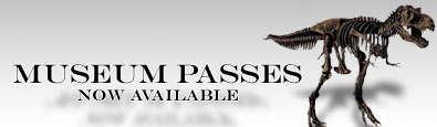 Museum Pass